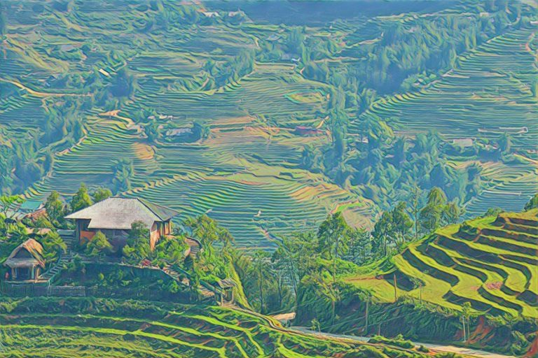 Sa Pa: Incredible Rice Terraces (And a Peek Into The World Of Backpacking)